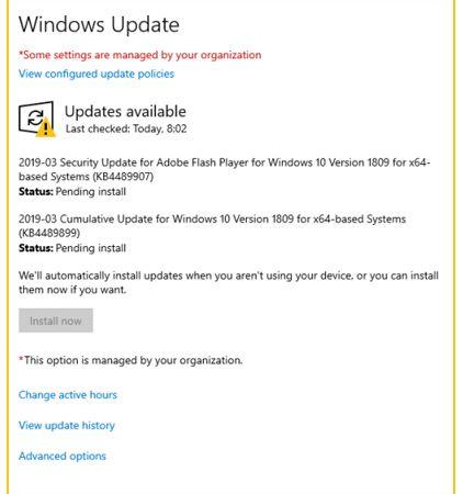 Install the Windows Update